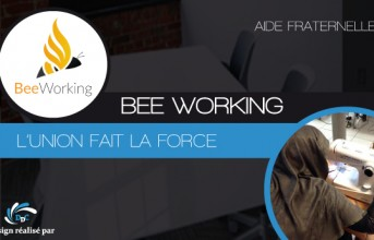 Association Bee Working : le co-working au féminin